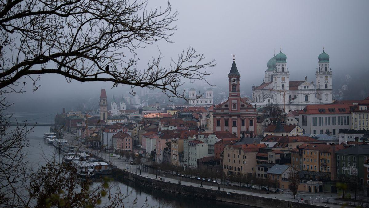 Eine Krähe sitzt auf einem Ast vor der Skyline von Passau, die im Nebel liegt.