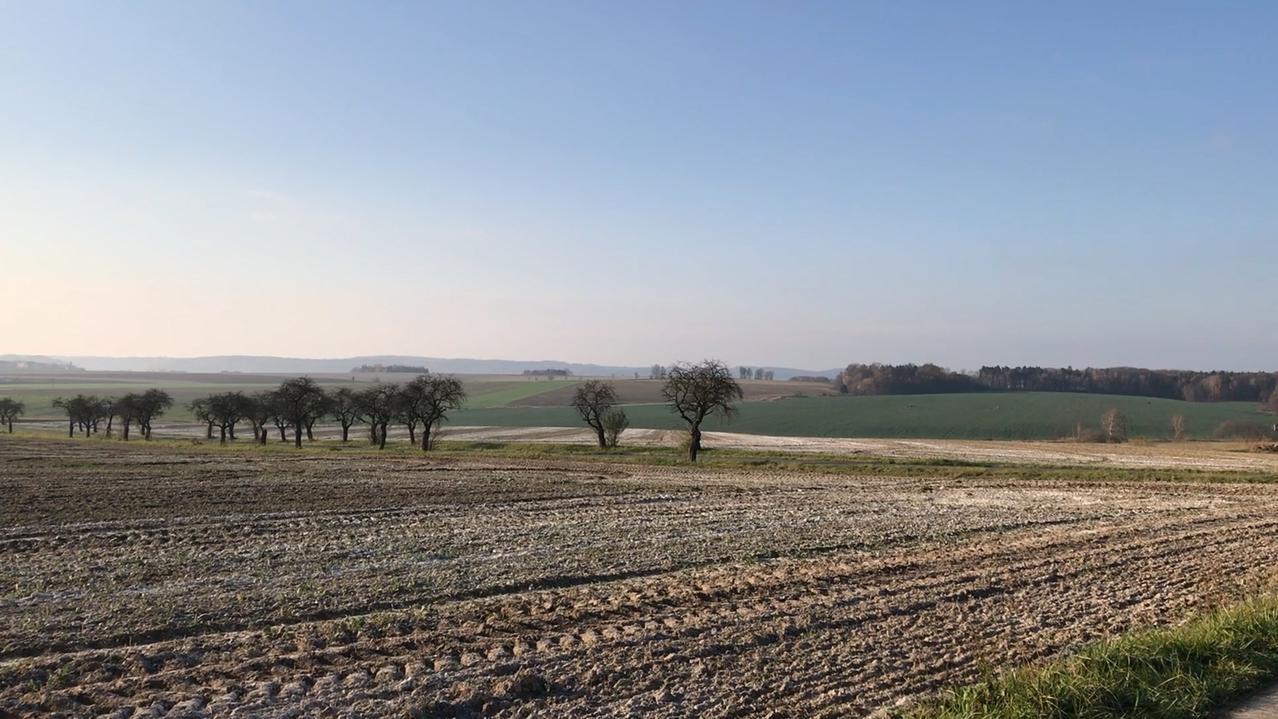 Die Landschaft nahe Píšť.