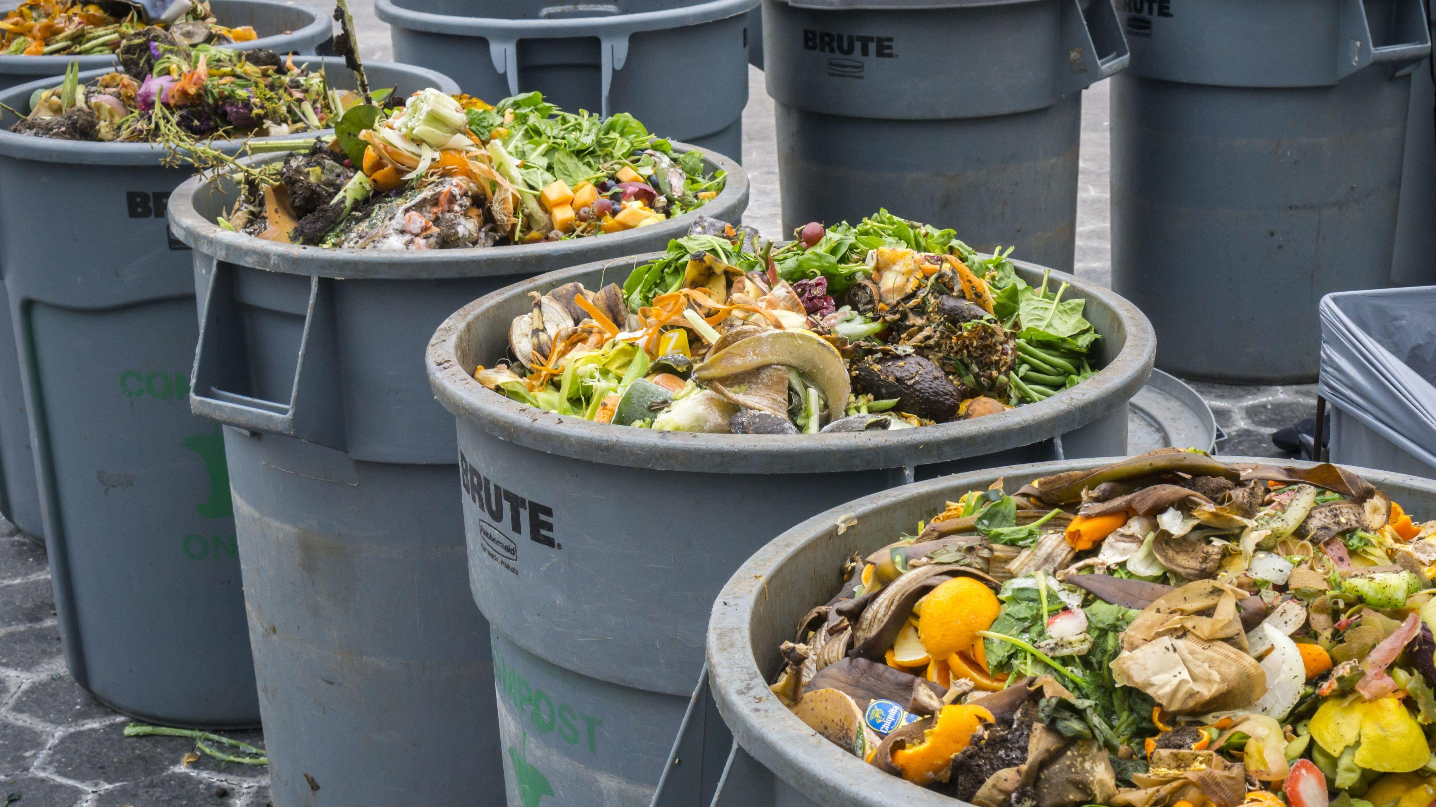 Lebensmittel in Mülltonnen