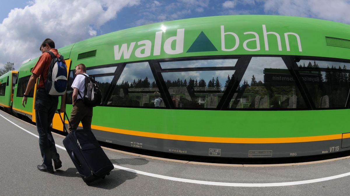 Fahrgäste vor einem Zug der Waldbahn