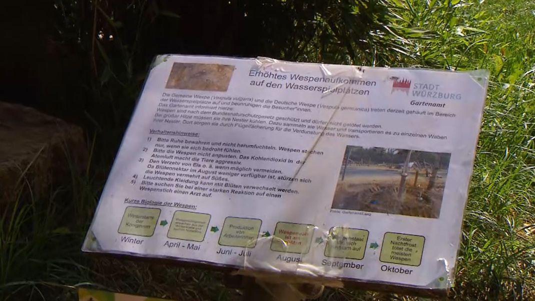 Stadt Würzburg warnt vor Wespen auf Wasserspielplätzen