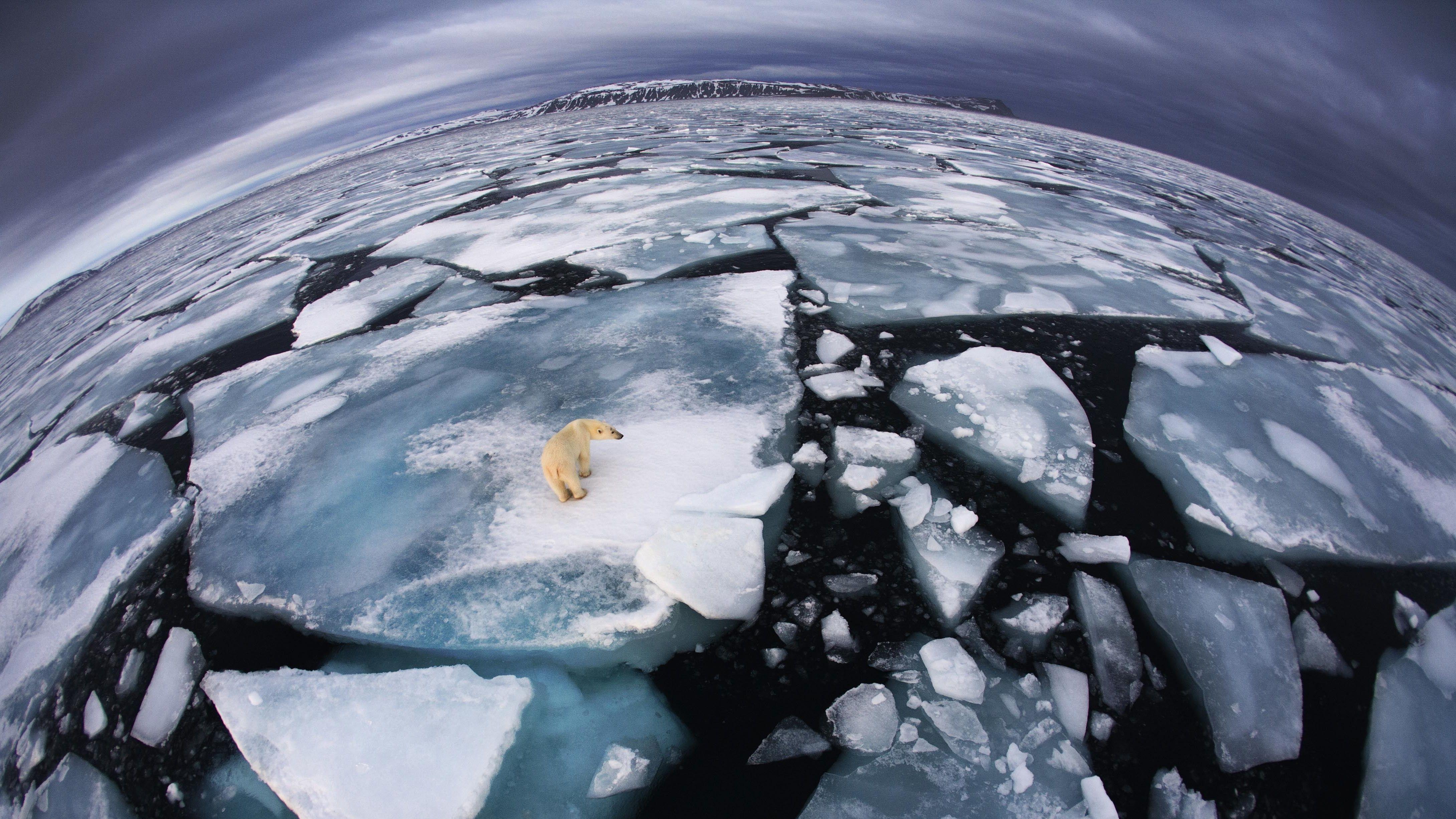 Der Klimawandel ist heute nicht mehr auf einzelne Regionen beschränkt, so das Ergebnis einer Studie.