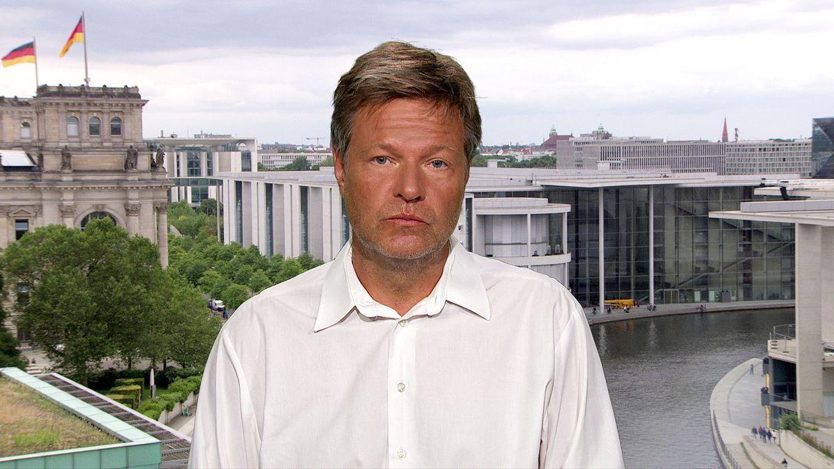 Robert Habeck, Bündnis90/Die Grünen