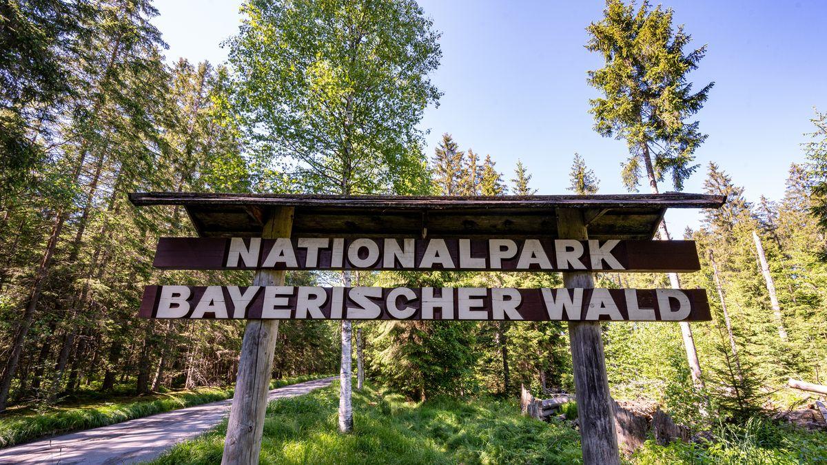 Nationalpark Bayerischer Wald steht auf einem Schild im Nationalpark