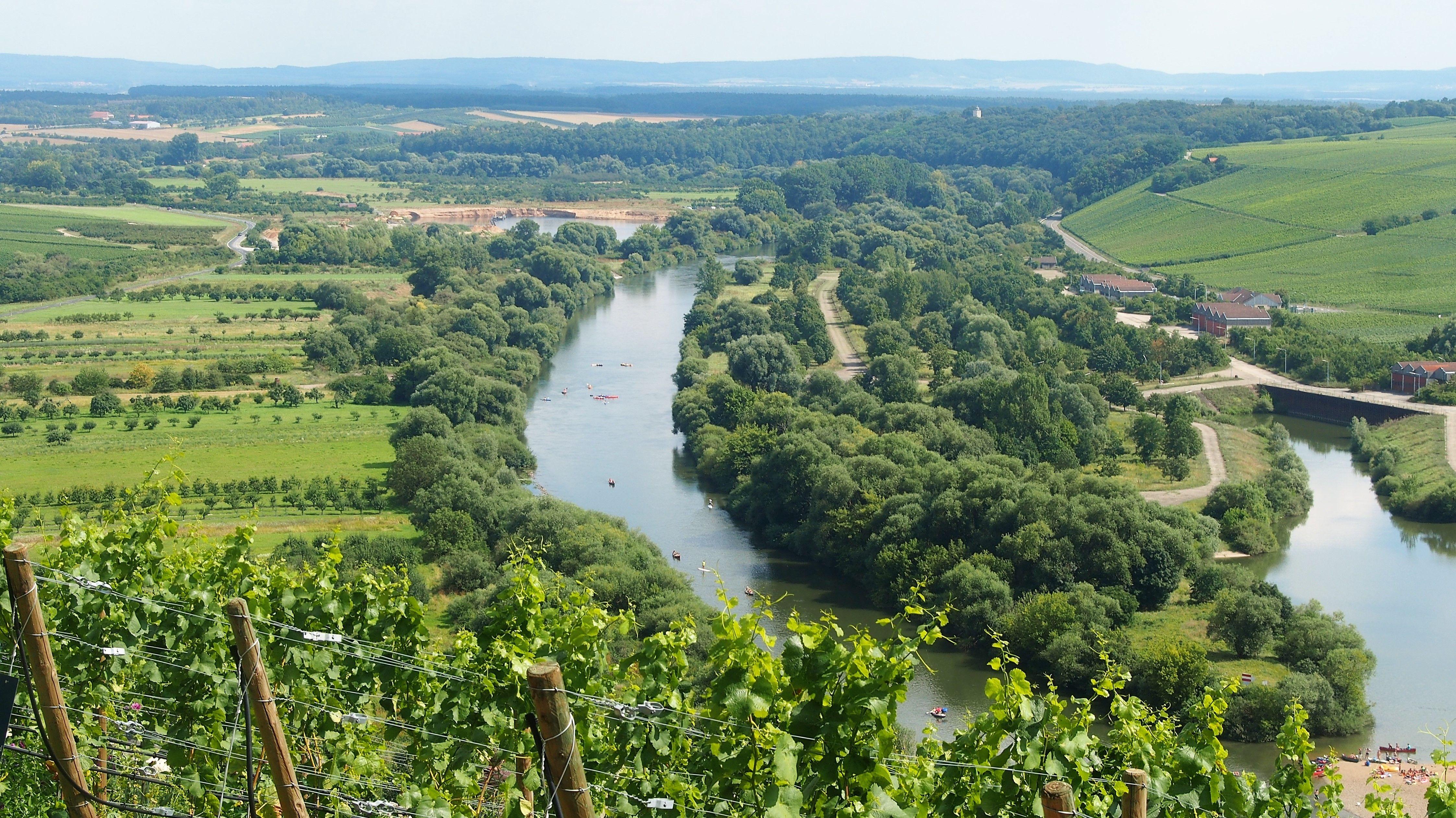 Blick auf die Die Volkacher Mainschleife, die ein Paradies für Weinliebhaber ist.