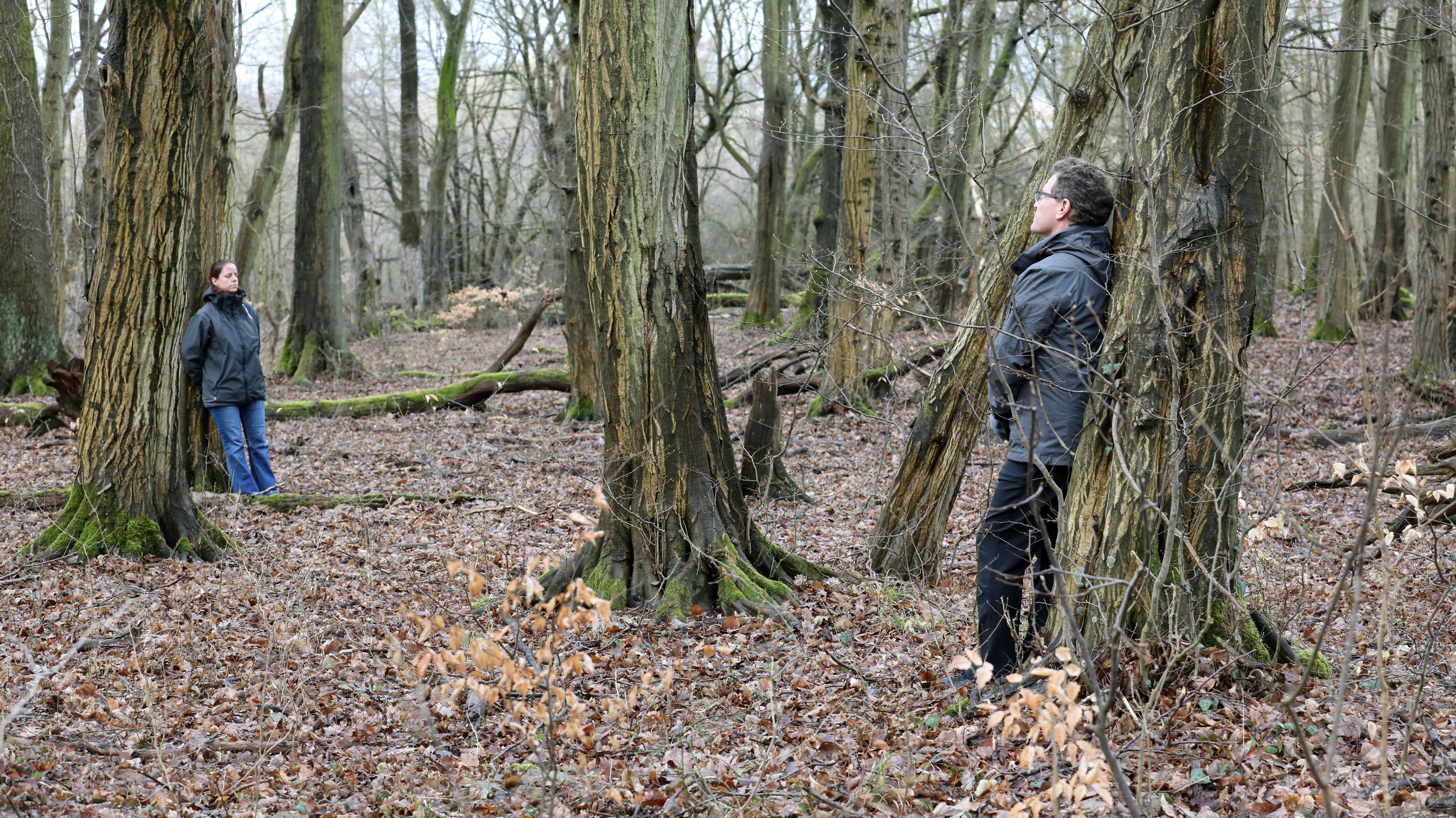 Ein Mann und eine Frau lehnen jeweils an einem Baum im Wald, es ist Herbst, beide tragen eine Jacke und der Boden ist mit Blättern bedeckt.