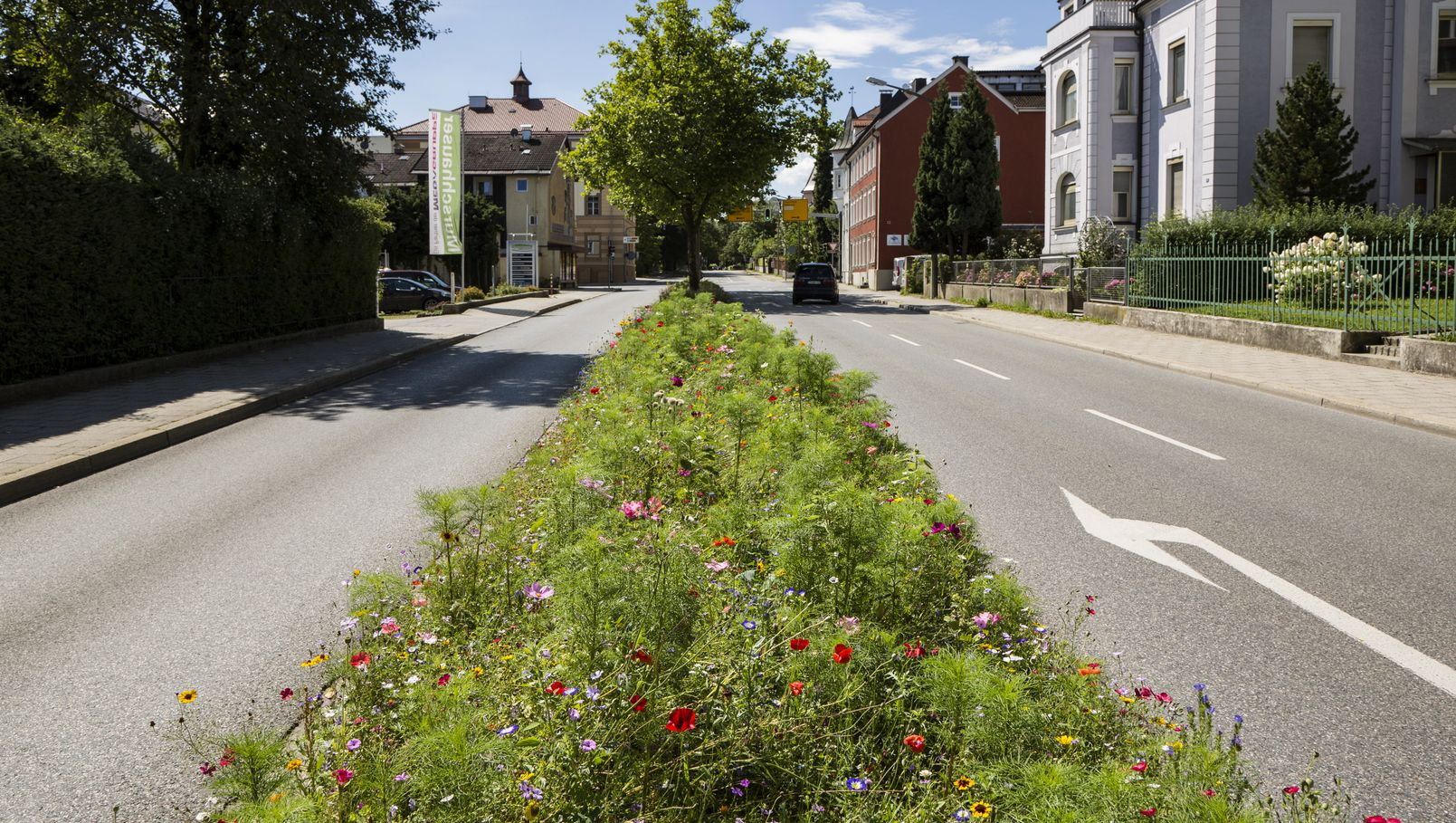 In Traunstein sind die Mittelstreifen mit Wildblumen begrünt. Das freut die Bienen - und das Auge.