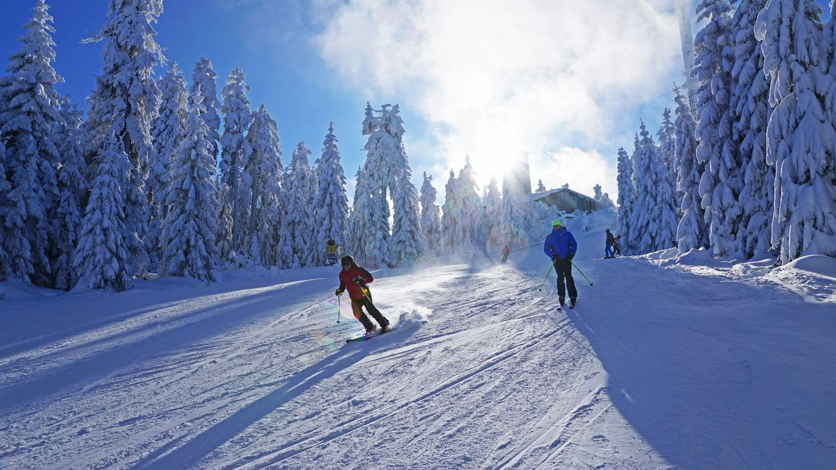 Skifahrer fahren auf der Nordpiste des Ochsenkopfs in Richtung Tal, dahinter verschneite Bäume.