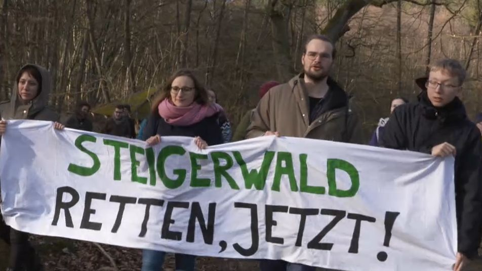 Fridays for Future im Kampf für den Nationalpark