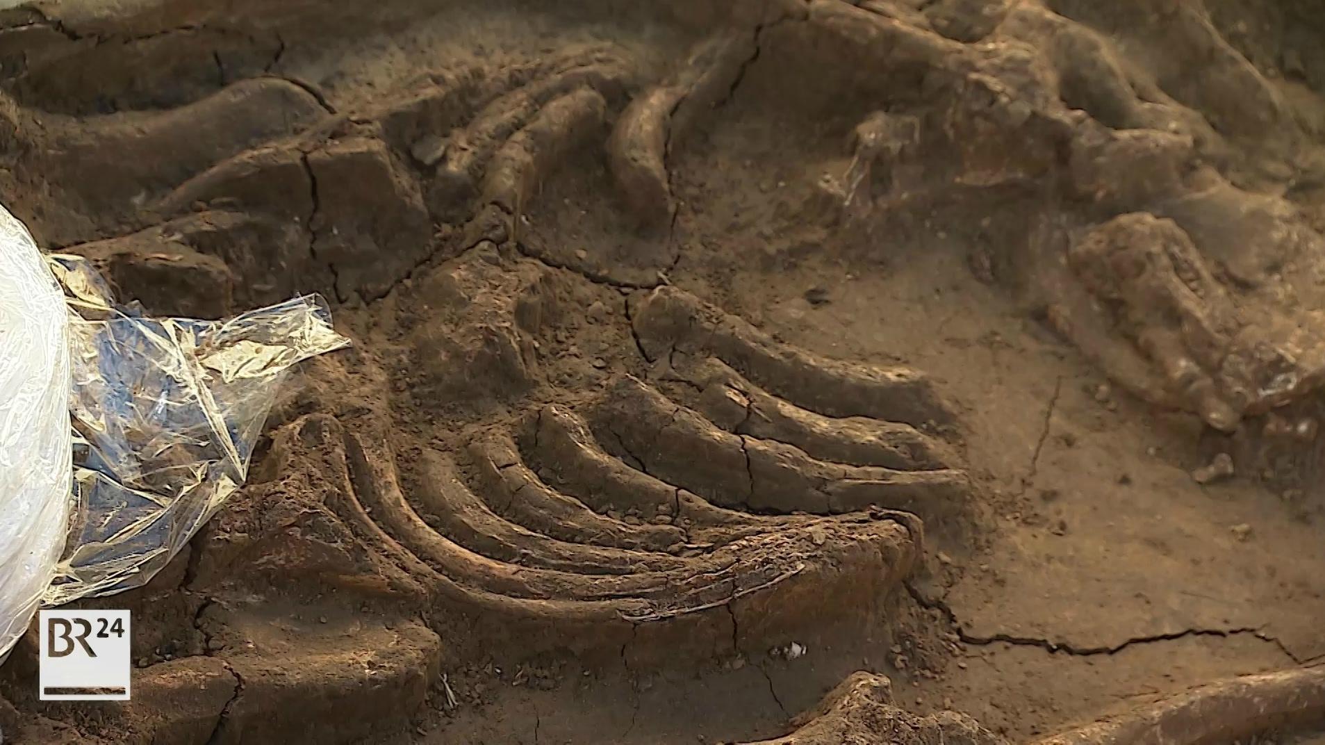 Skelett bei Repperndorf