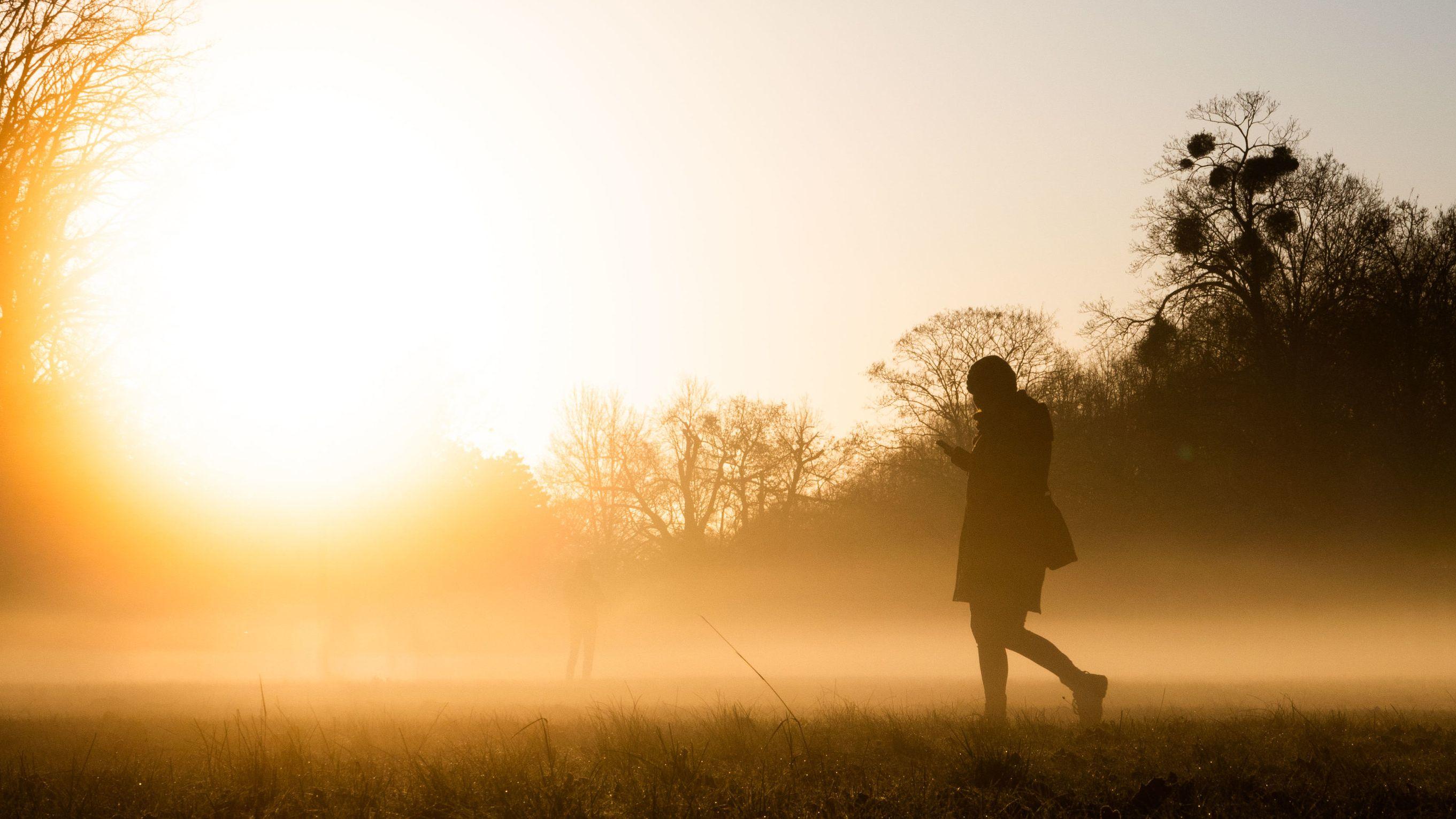 Frau geht spazieren, während die Sonne den Bodennebel in goldenes Licht taucht.