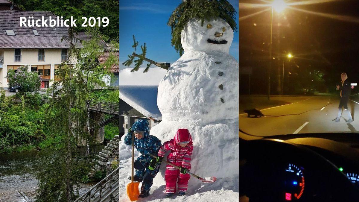 Die Bilder des Jahres 2019