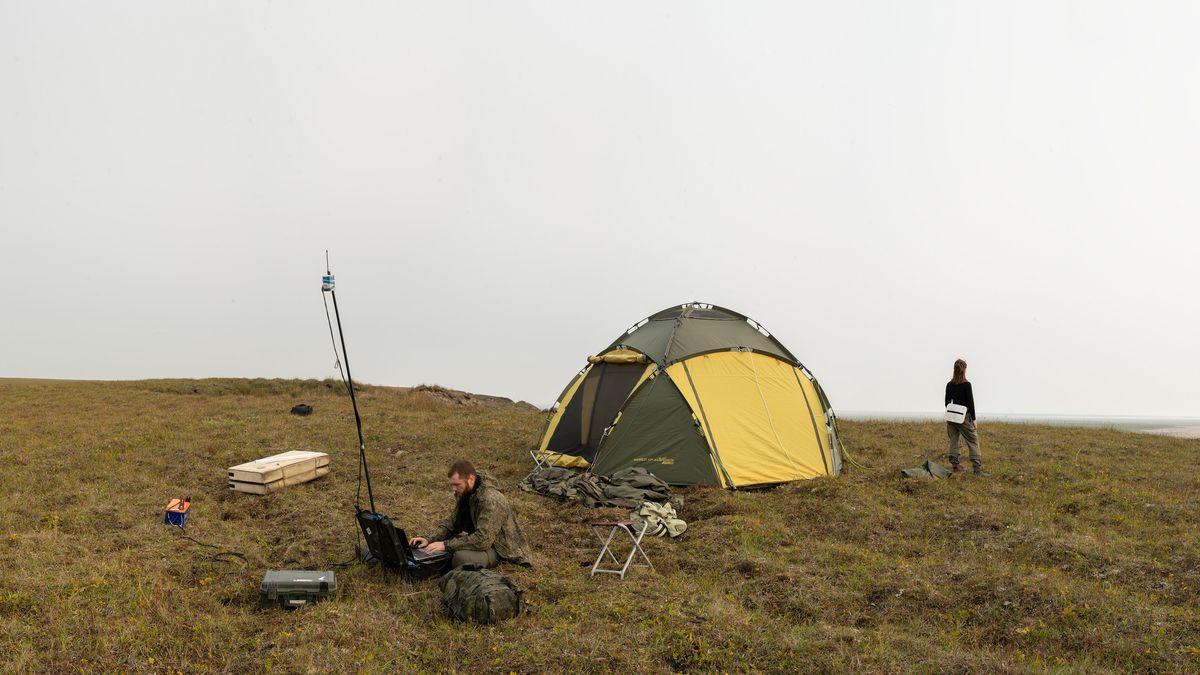 Zelt in einer Graslandschaft, davor ein Mann mit Messgeräten, dahinter eine Frau mit Tasche, bei ihren Feldstudien in Sibirien