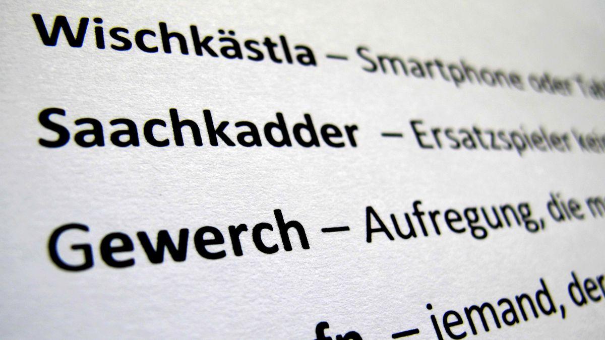 """Die Mundart-Wörter """"Wischkästla"""", """"Saachkadder"""" und """"Gewerch"""" stehen in einem Wörterbuch."""