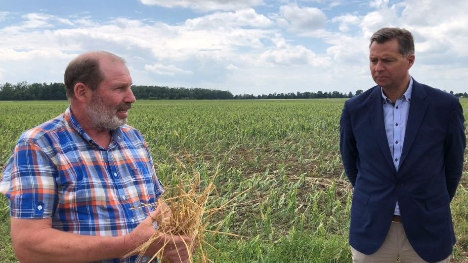 Landwirt Ulrich Niederschweiberer zeigt MdB Stephan Mayer die zerstörte Ernte.