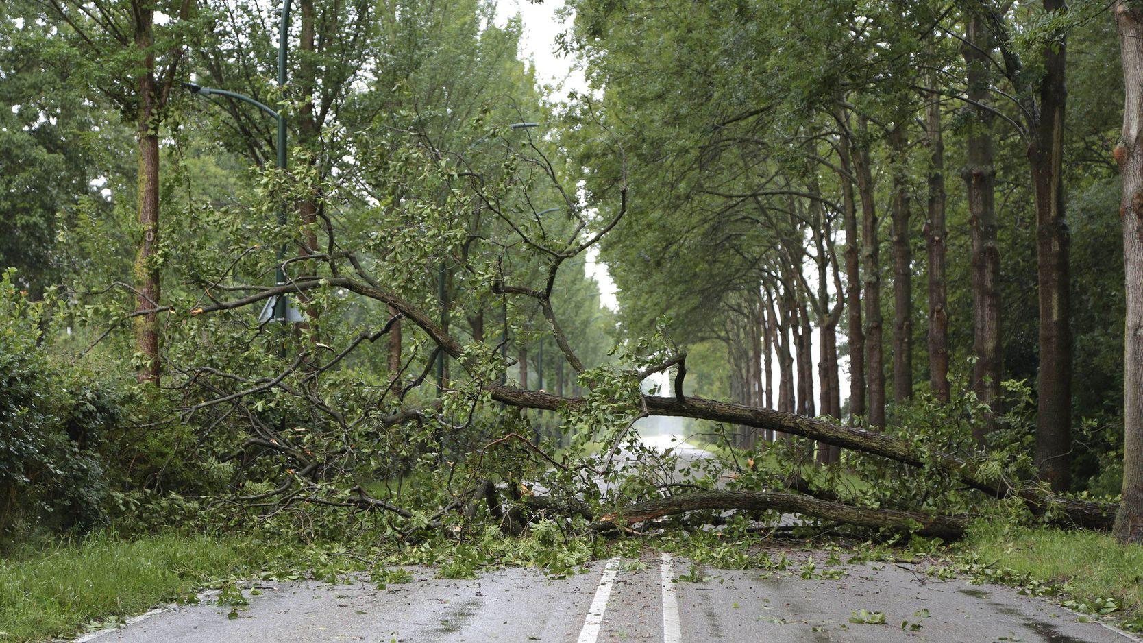 Schäden durch Sturmtief Ivan