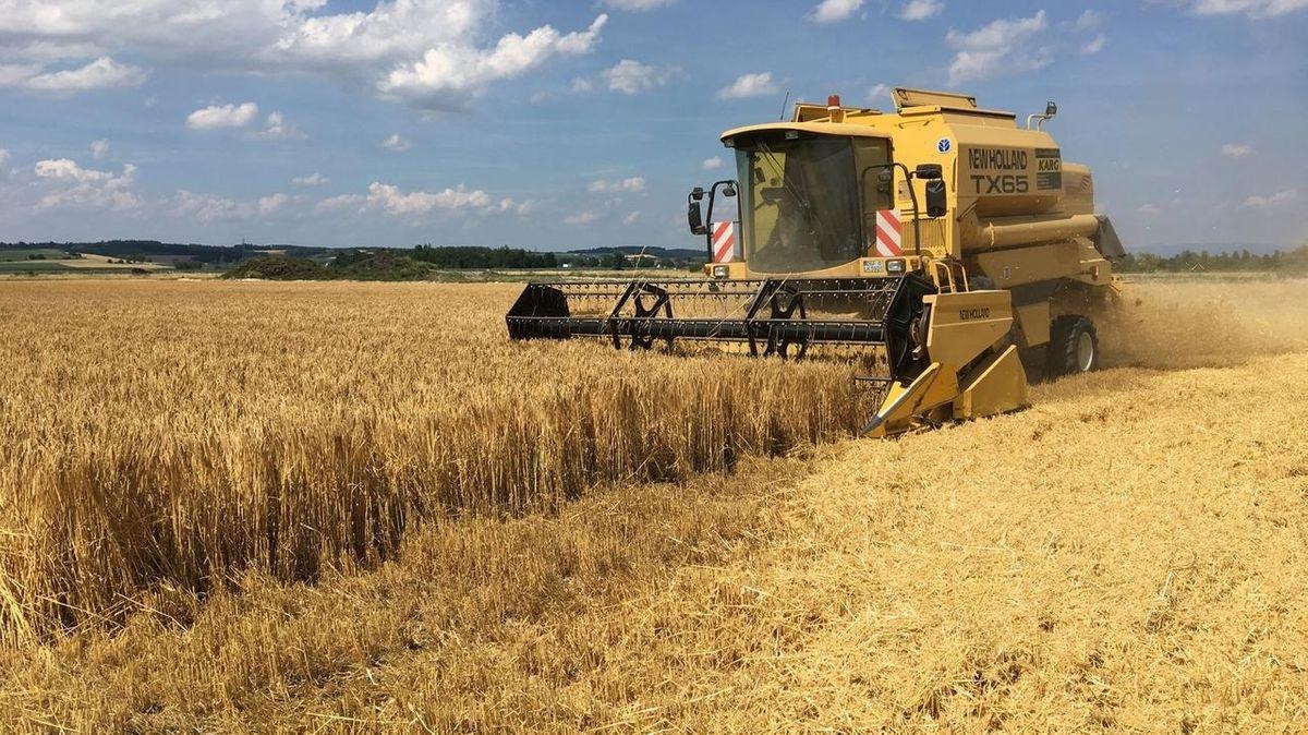 Getreideernte im Gäuboden