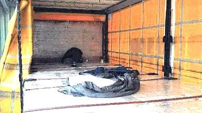 Auflieger des Lkw, in dem die Migranten transportiert wurden