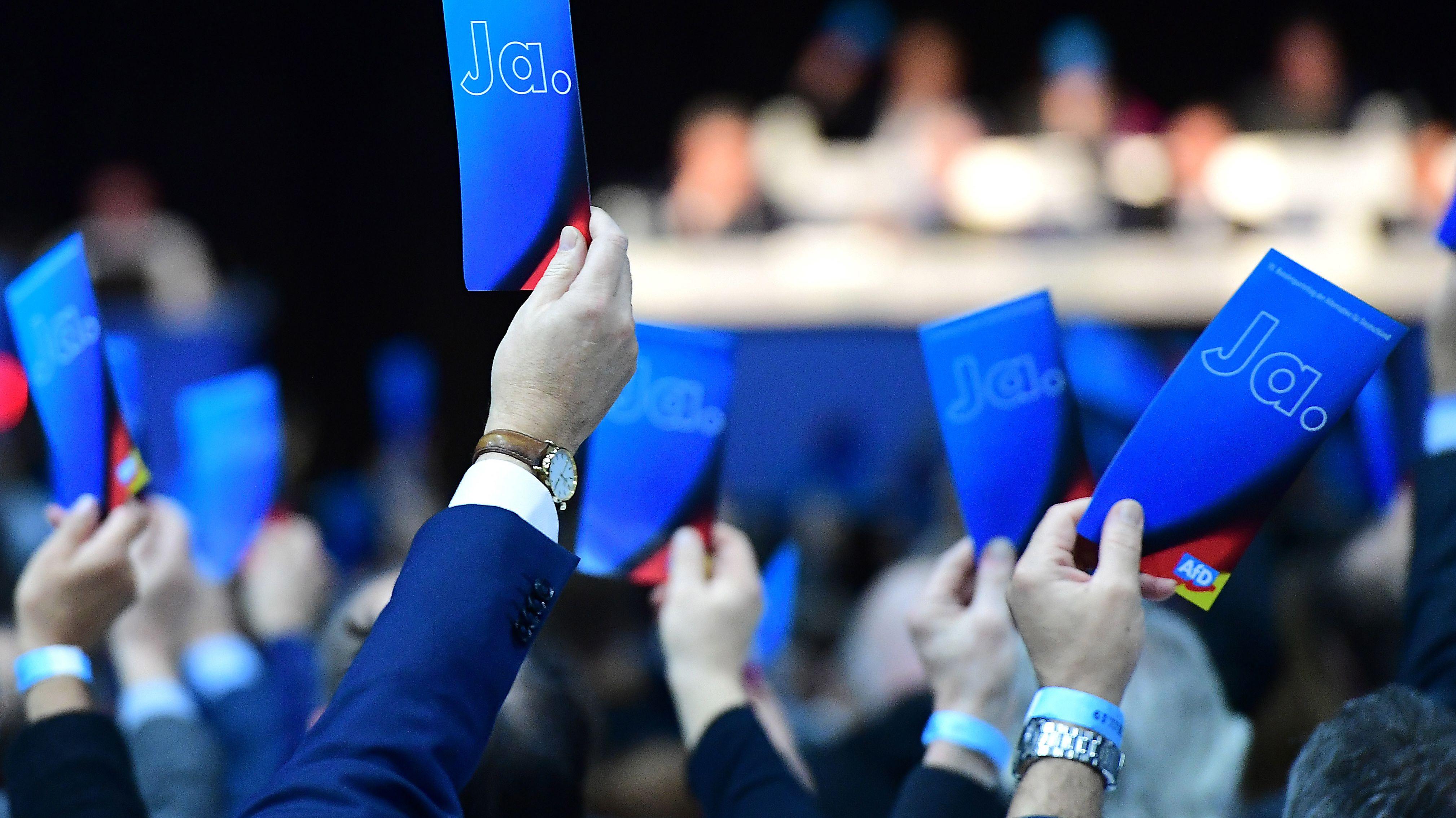 Delegierte stimmen auf dem AfD-Parteitag in Braunschweig ab.