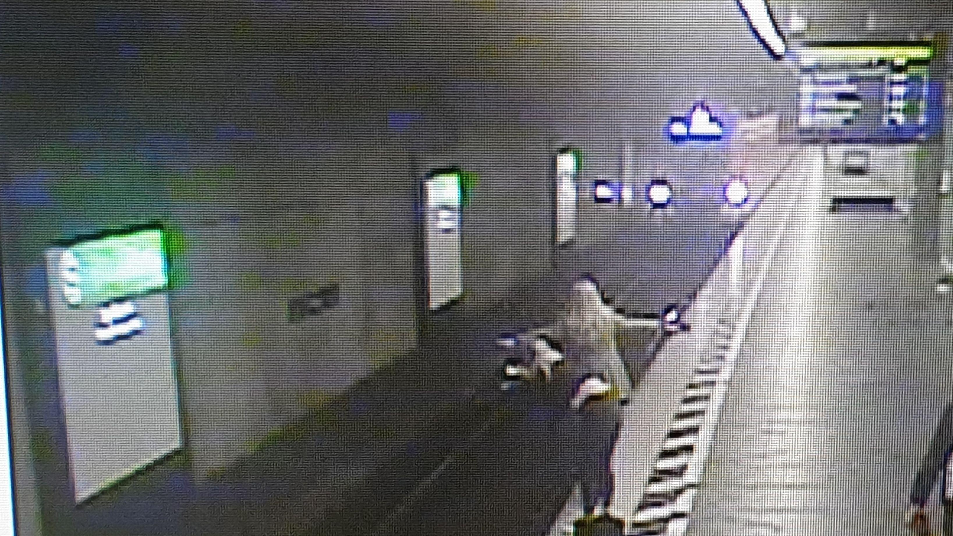 """""""Kreissignal"""" soll dazu dienen, Züge im Notfall zu stoppen"""