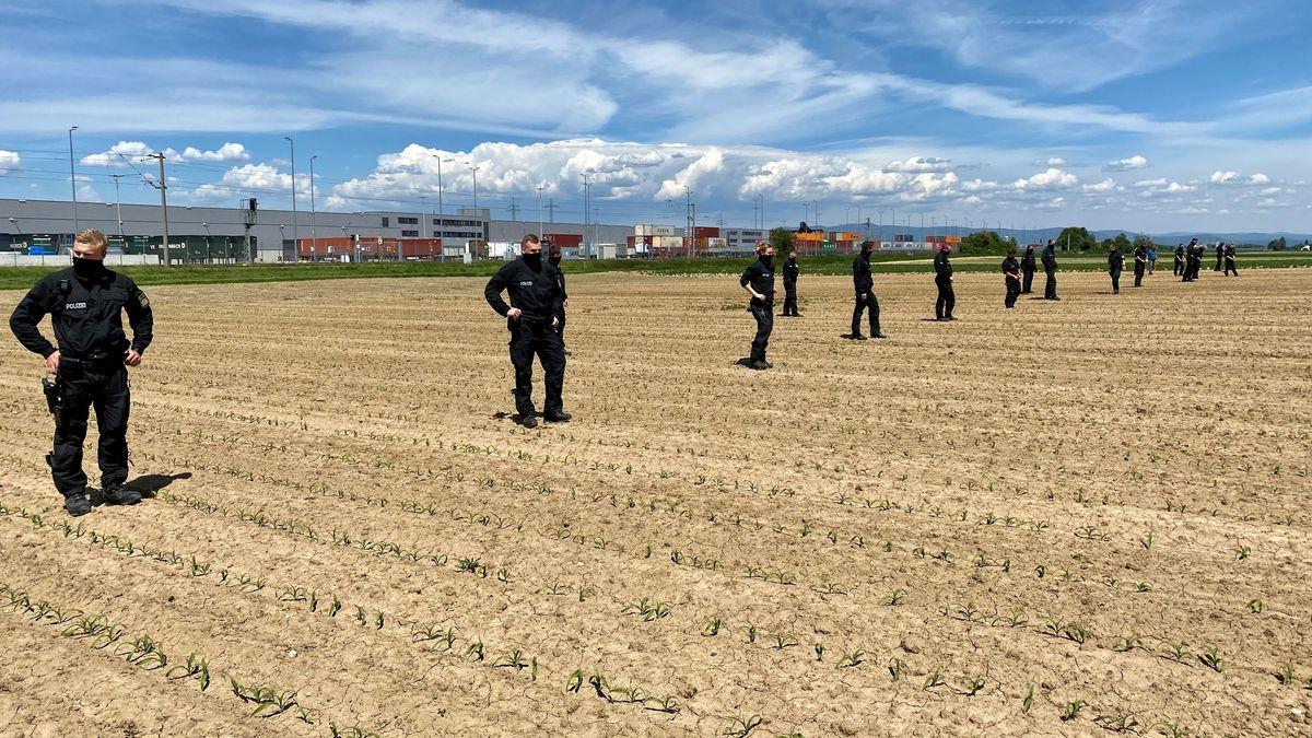 Die Polizei sucht das Feld, auf dem die Leiche gefunden wurde, nochmals ab