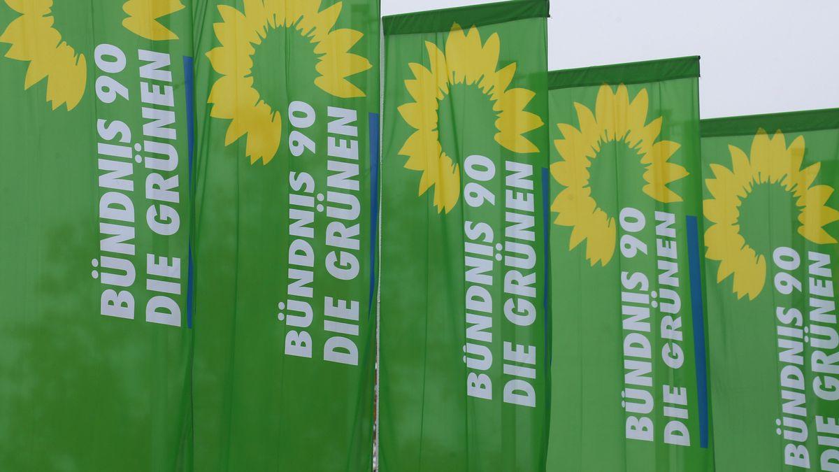 Fahnen der Grünen in Lindau
