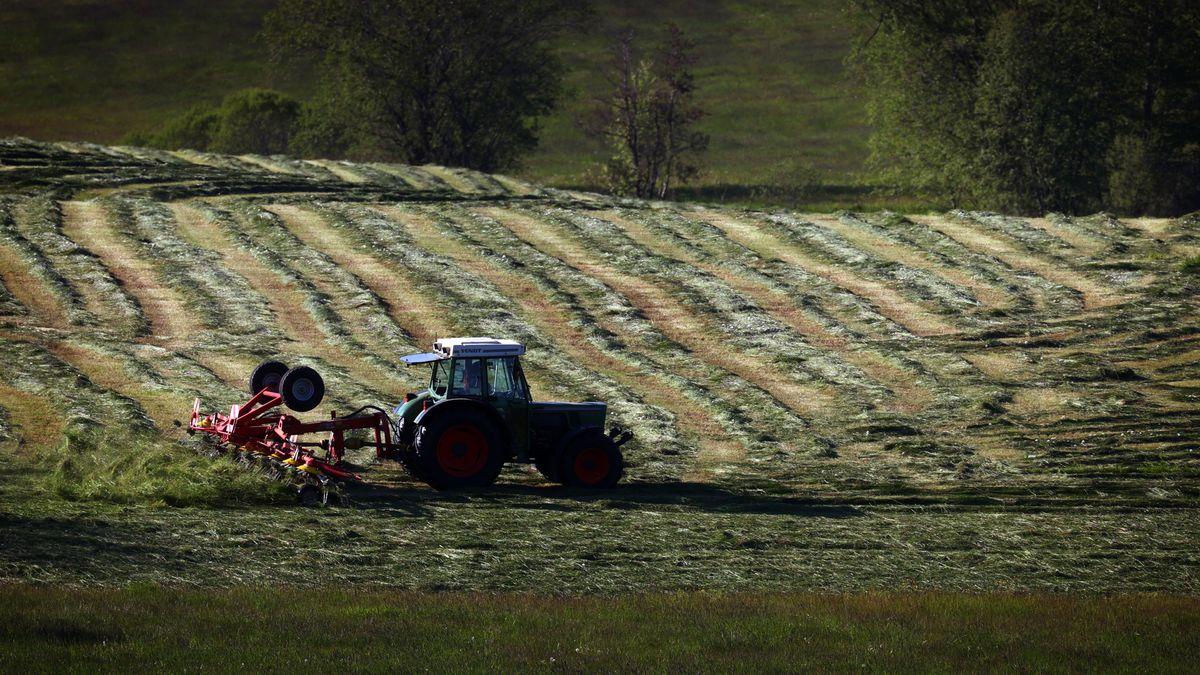 Der Bauernverband plädiert für mehr Klimaschutz in der Landwirtschaft