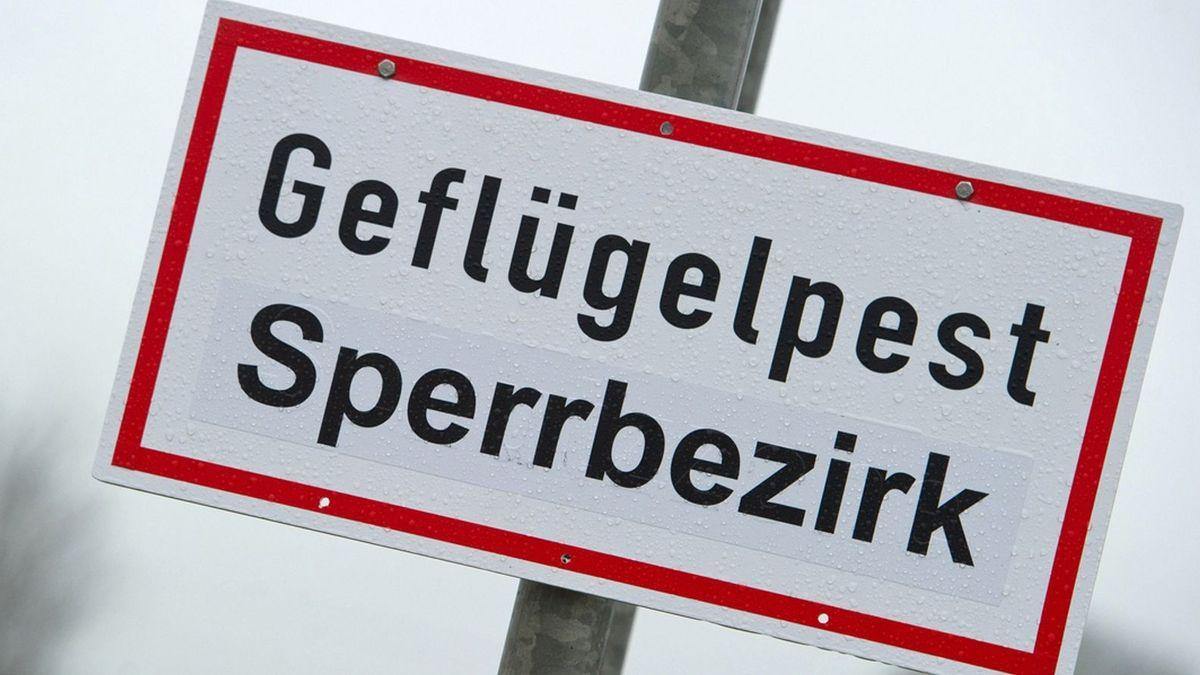 In schwarzen Buchstaben steht auf einem rot umrandeten Schild: Geflügelpest, Sperrbezirk.