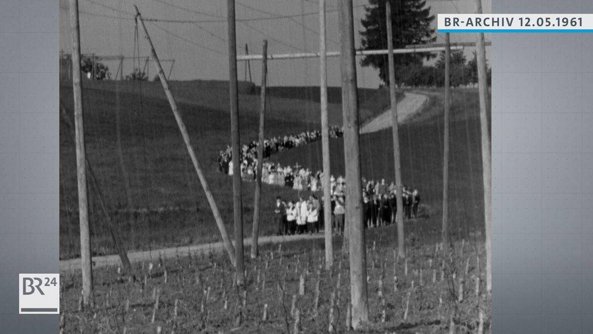 Prozession entlang von Hopfenfeldern