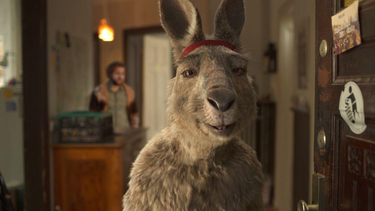 Wieder im Kino: Die Känguru-Chroniken von Dani Levy (FIlmszene)