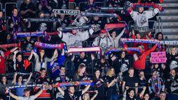 Fans der Nürnberg Ice Tigers halten Fan-Schals des Vereins im Stadion hoch. | Bild:dpa/picture alliance