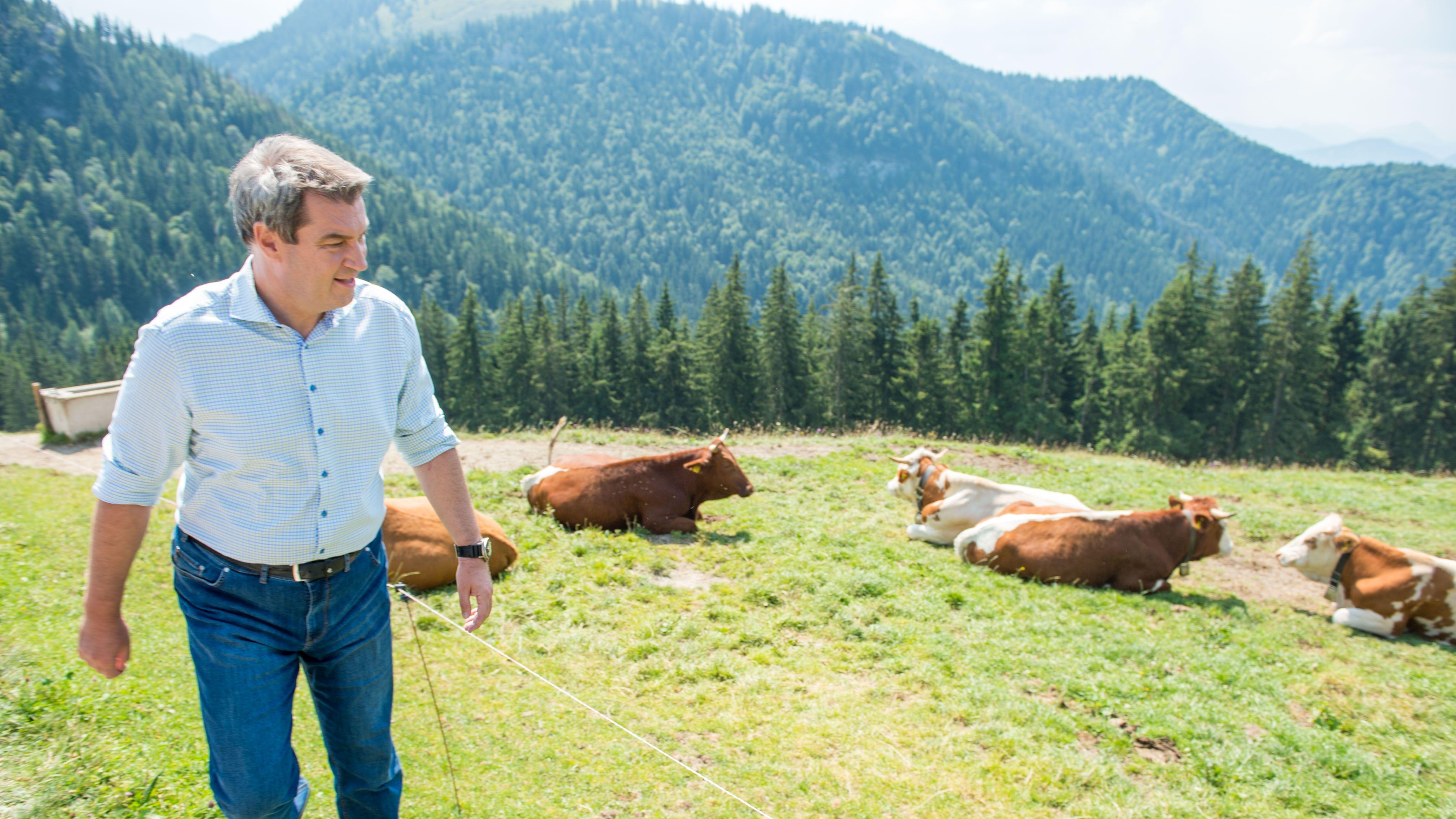 Söder fordert Fleischerzeugung nach bayerischem Vorbild