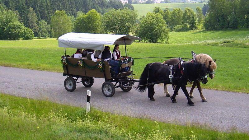 Die Fuhrleute-Gedächtnisfahrt in Rinchnach im Bayerischen Wald
