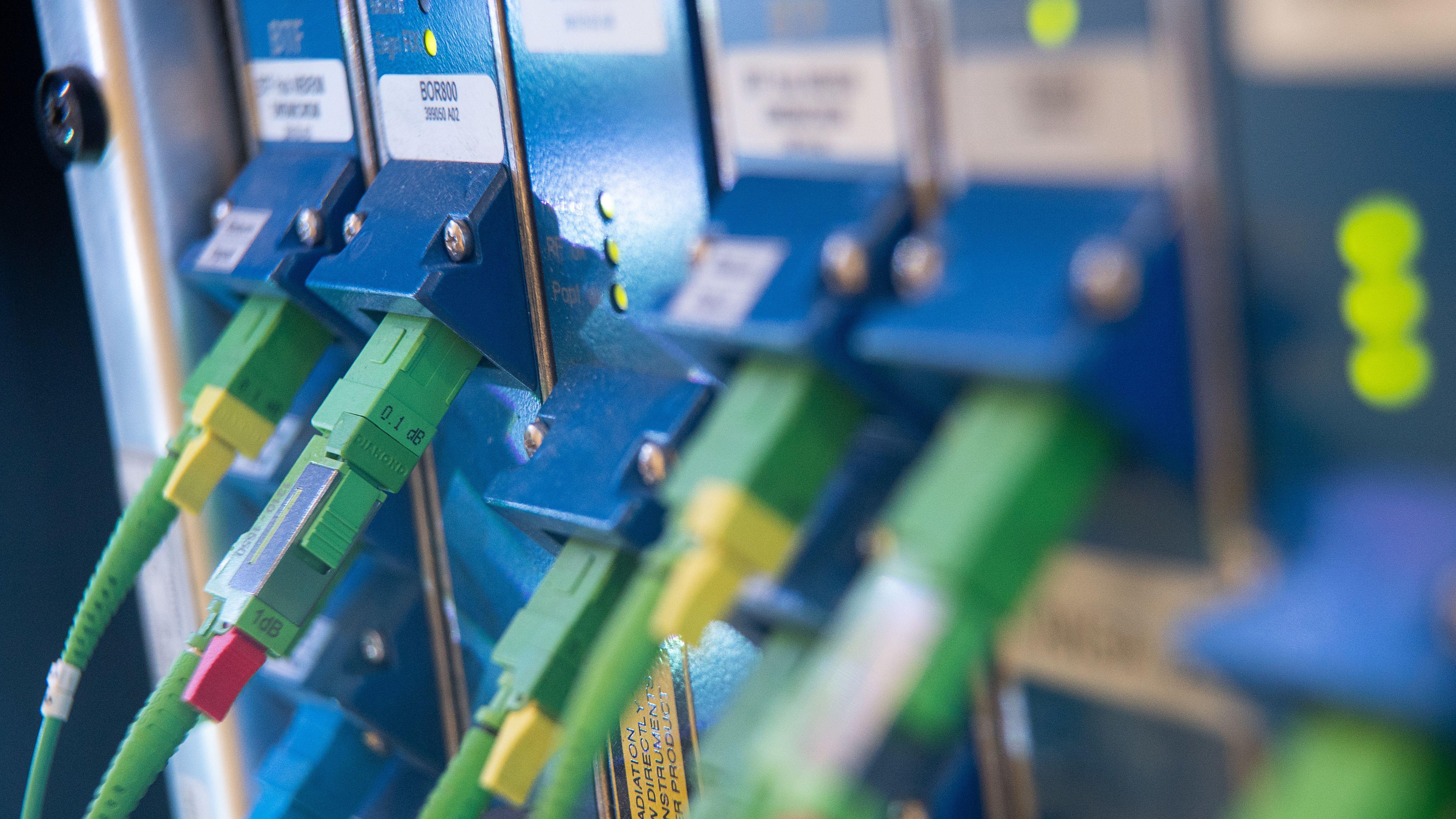 Ethernetkabel stecken in einem Glasfasermodul eines Serverschrankes (Symbolbild)