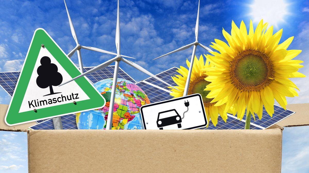 Eine Fotomontage zeigt unter anderem Sonnenblumen, Windräder und ein Klimaschutz-Schild. in einem Karton