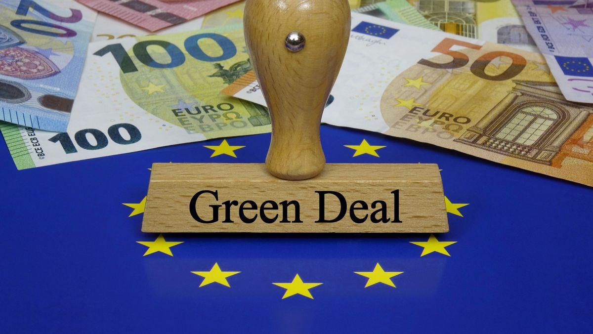 Das Europaparlament will eine Verschärfung der Klimaziele.