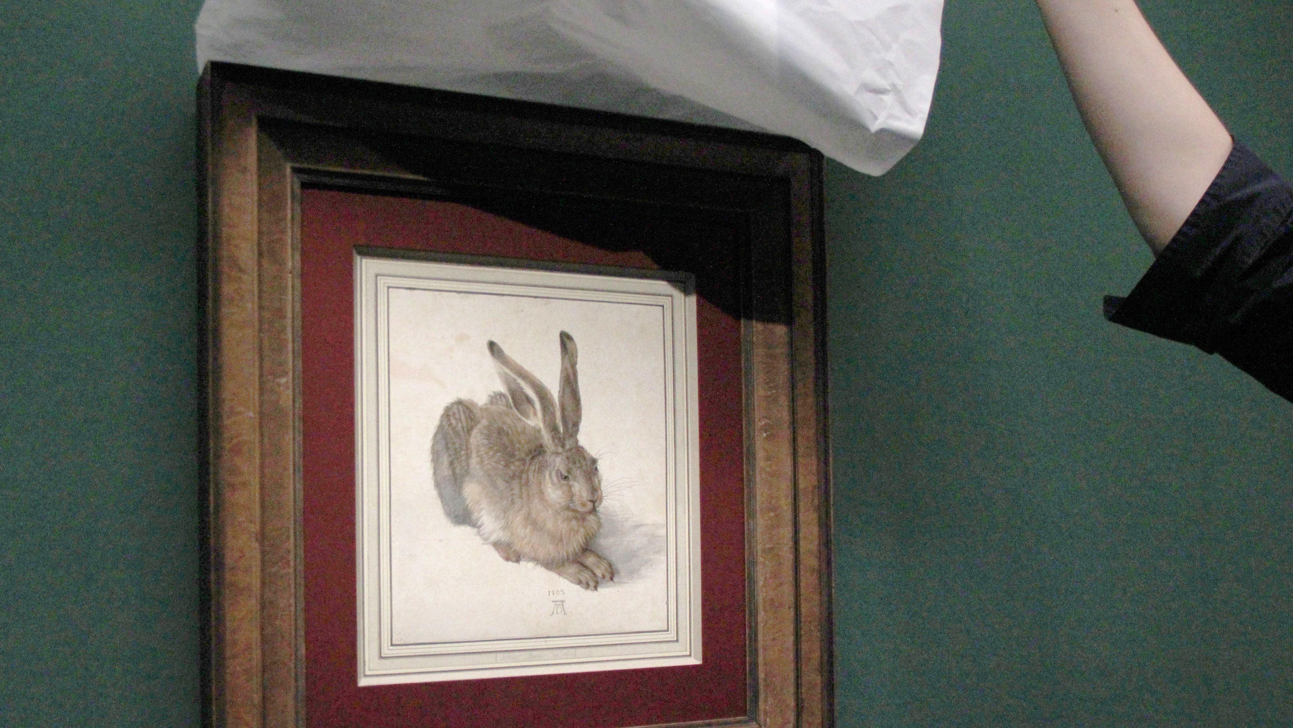 Der Hase von Albrecht Dürer