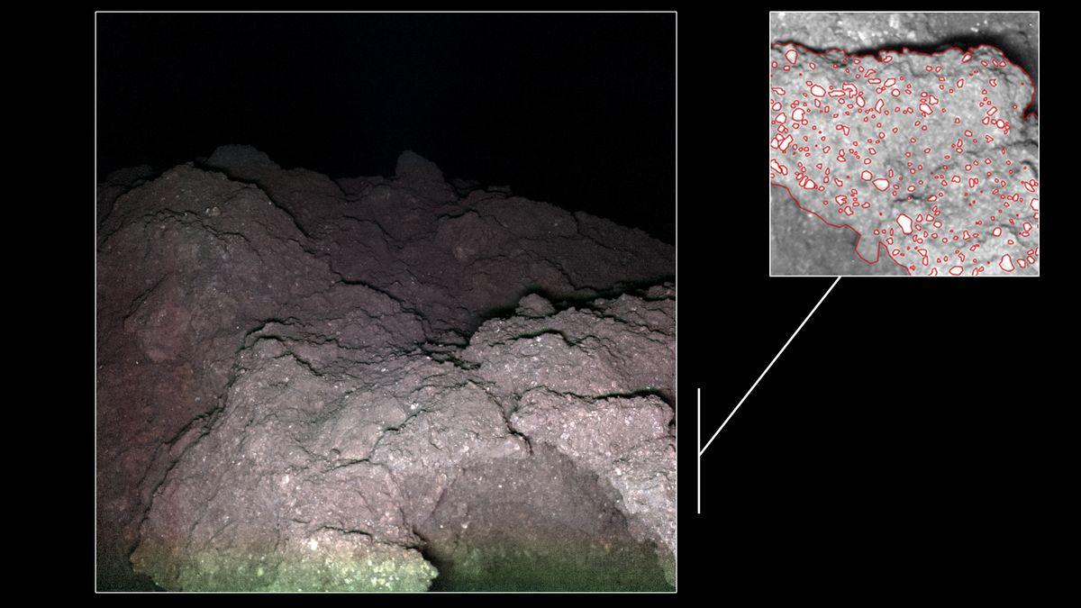 Auf dem Asteroiden Ryugu befinden sich unter anderem dunkle Brocken mit einer krümeligen, blumenkohlartigen Oberfläche mit Mineral-Einsprengseln.