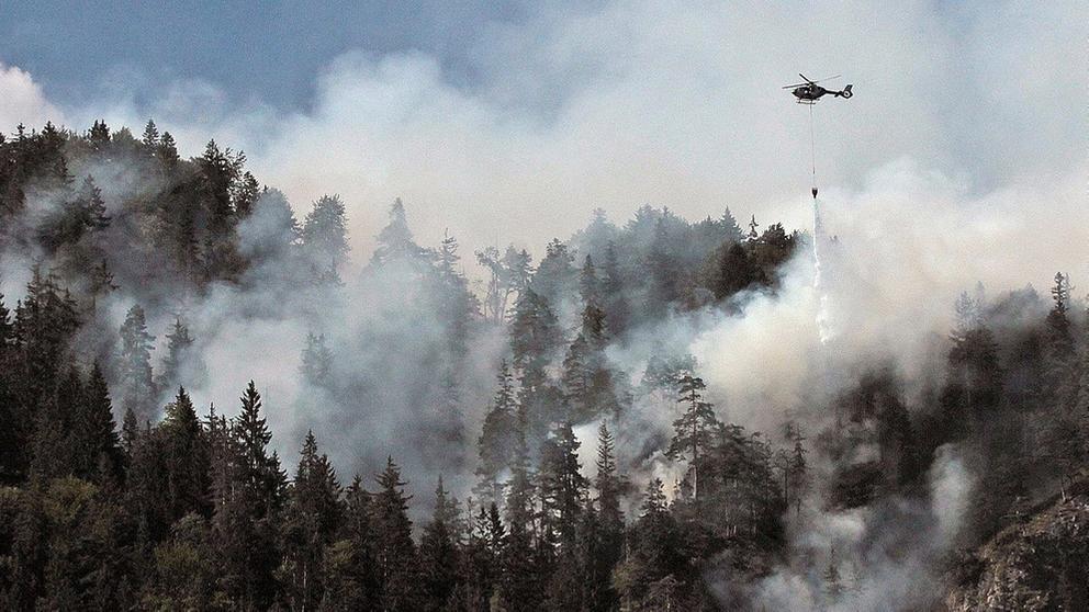 Waldbrand in Bergwald im Inntal | Bild:dpa-Bildfunk/Josef Reisner