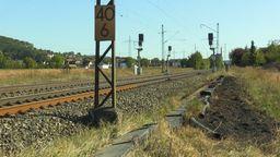 Die ICE-Strecke zwischen Bamberg und Nürnberg ist nach einem Böschungsbrand in Oberfranken gesperrt.   Bild:BR