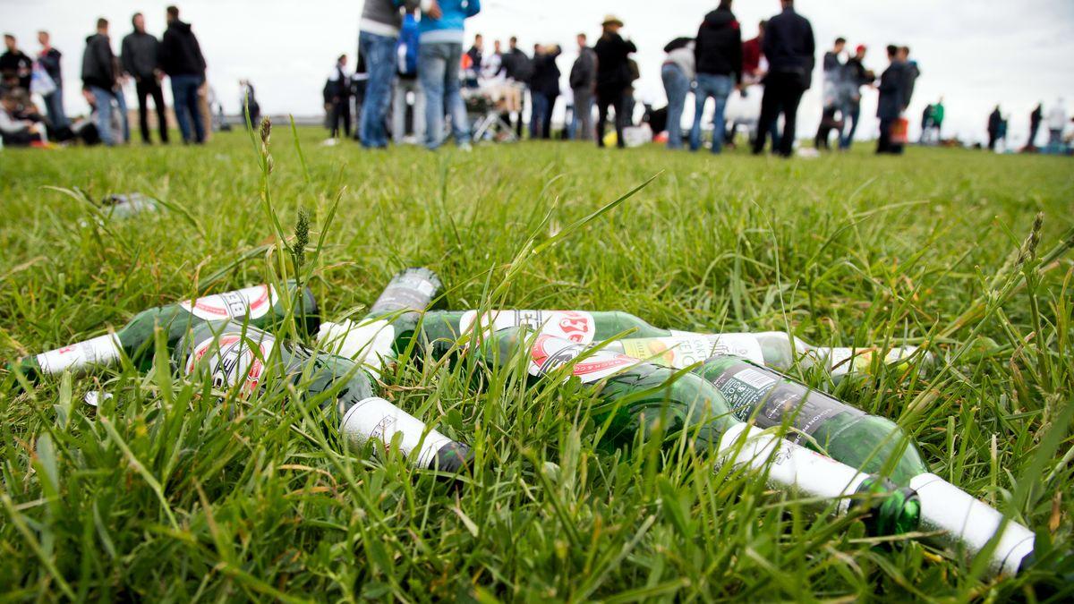 Leere Bierflaschen auf einer Wiese