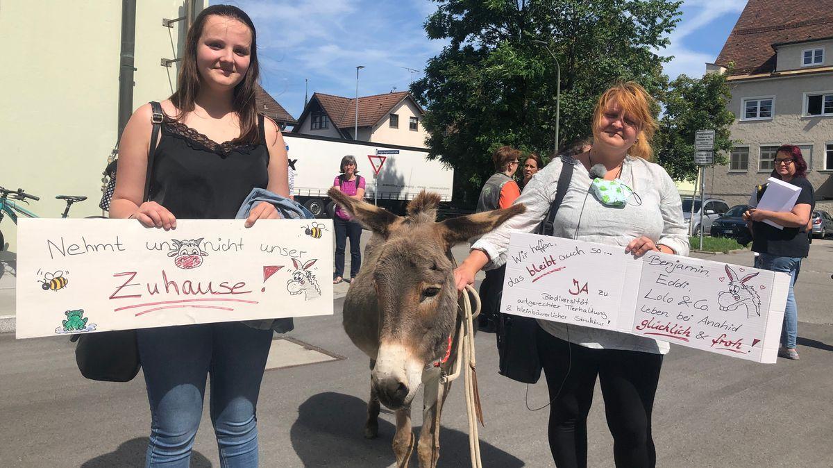 Unterstützer der Eselfarm in Pähl haben 7.000 Unterschriften für den Erhalt der Farm gesammelt