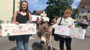 Unterstützer der Eselfarm in Pähl haben 7.000 Unterschriften für den Erhalt der Farm gesammelt | Bild:BR / Martin Breitkopf