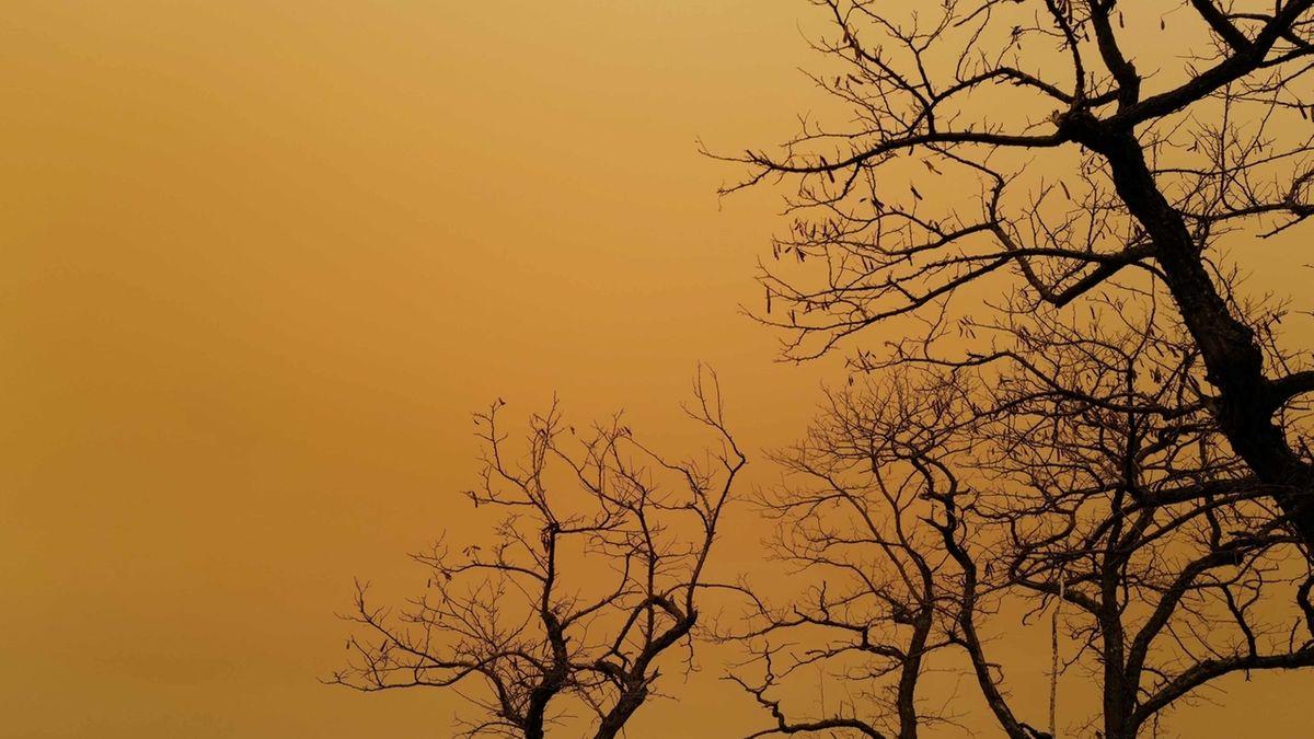 Manchmal bringen Winde so viel Saharastaub zu uns, dass sich der Himmel gelb oder rötlich verfärbt