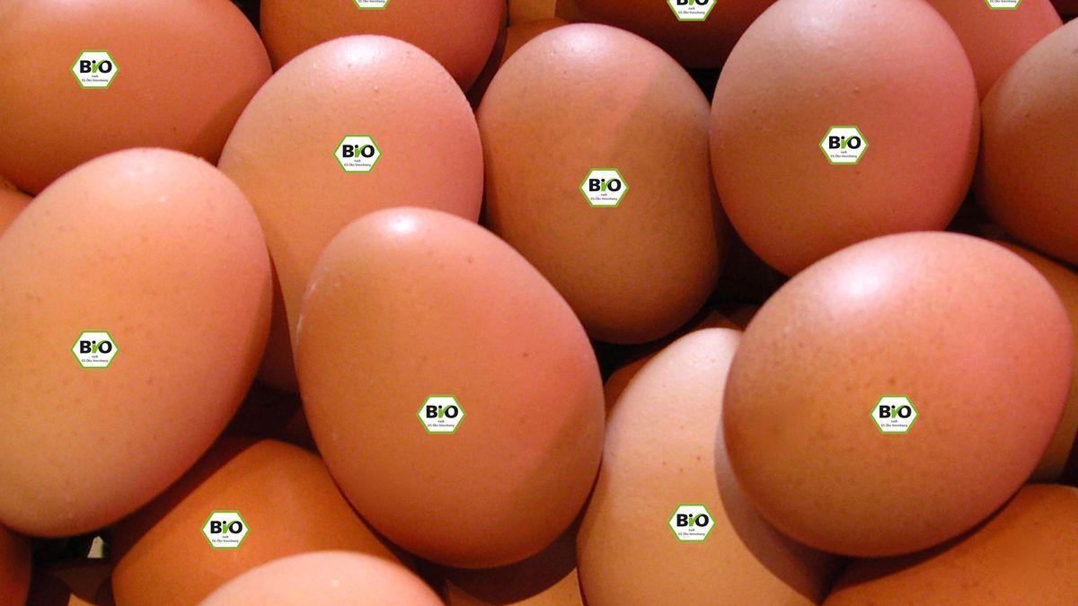 Bio-Eier mit entsprechendem Aufkleber