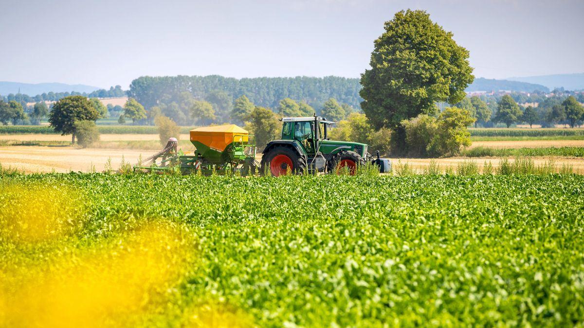 Ein Landwirt arbeitet bei hochsommerlichem Wetter auf einem Feld