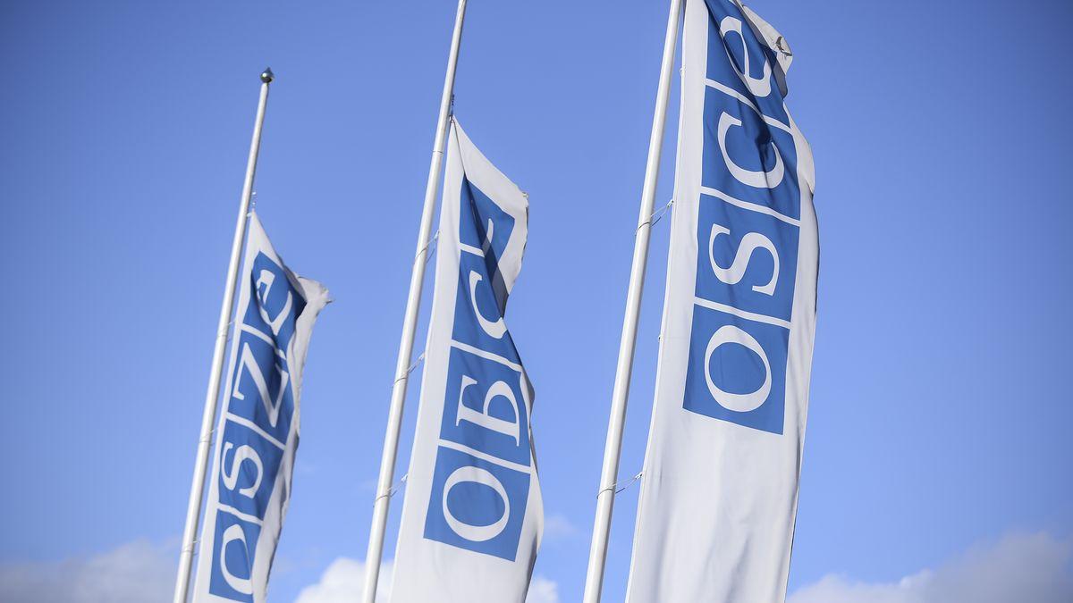 Flaggen der OSZE in Wien