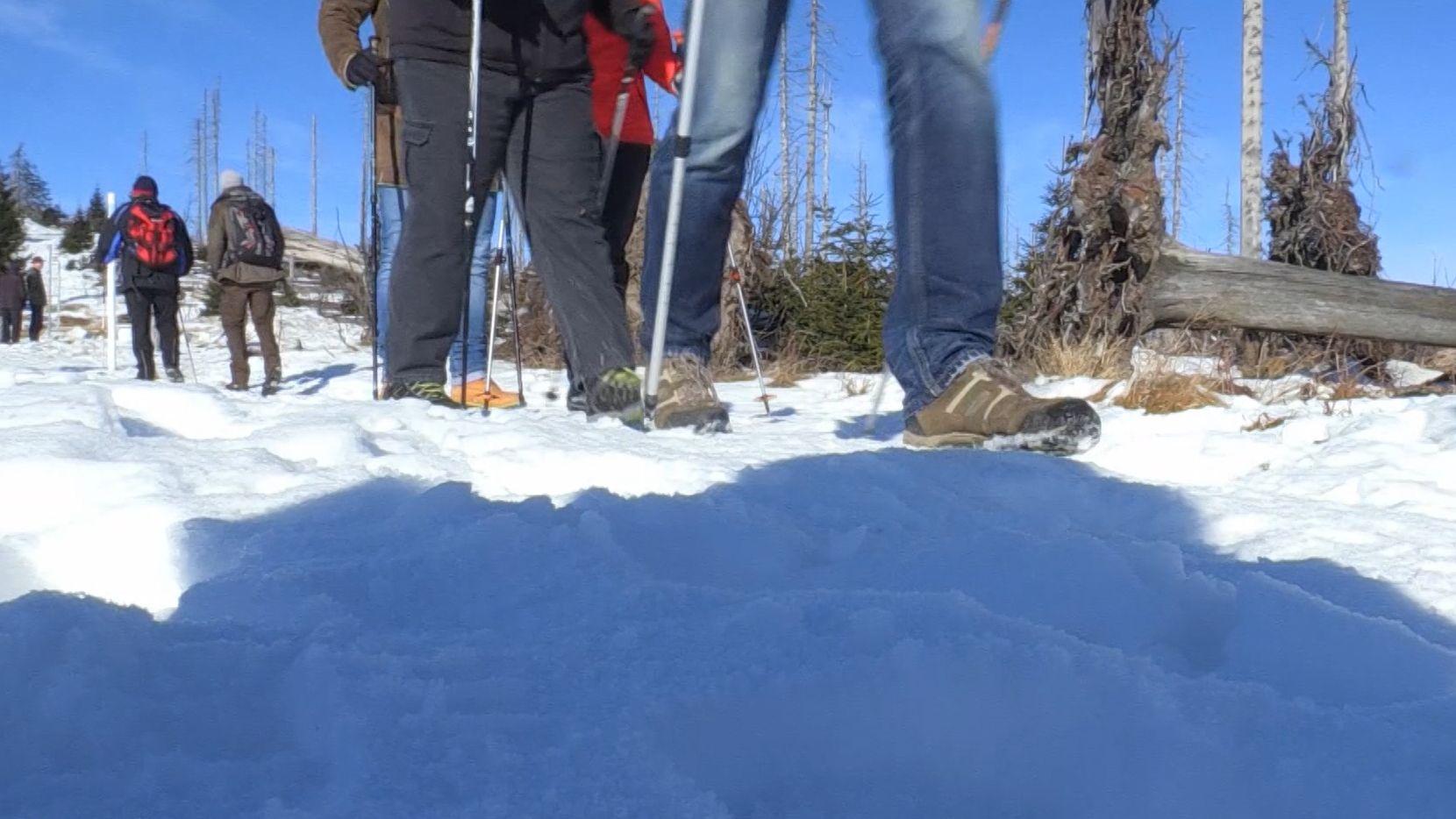 Wanderer im Schnee auf dem Dreisessel