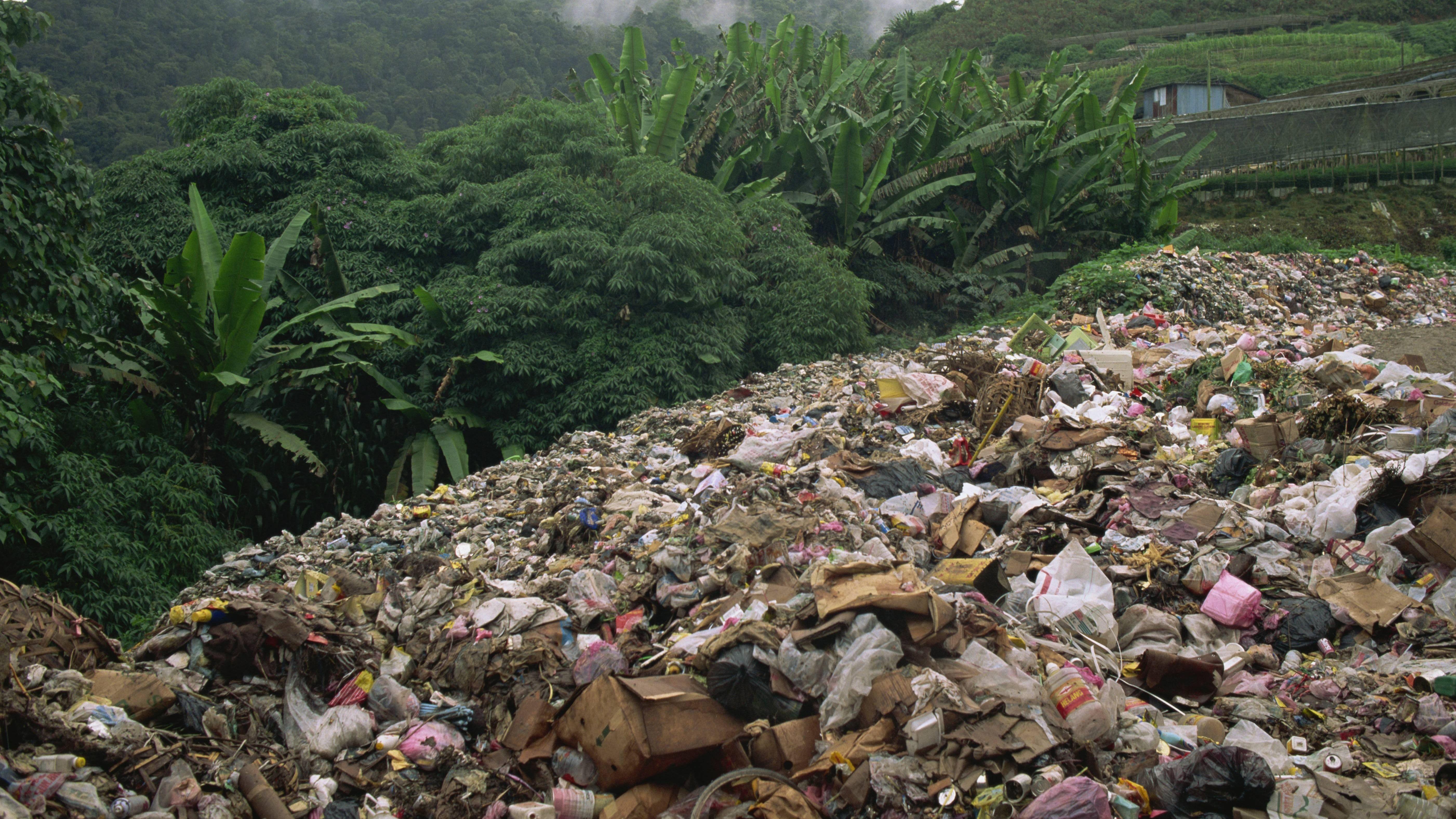 Müllhalde im Dschungel von Malaysia