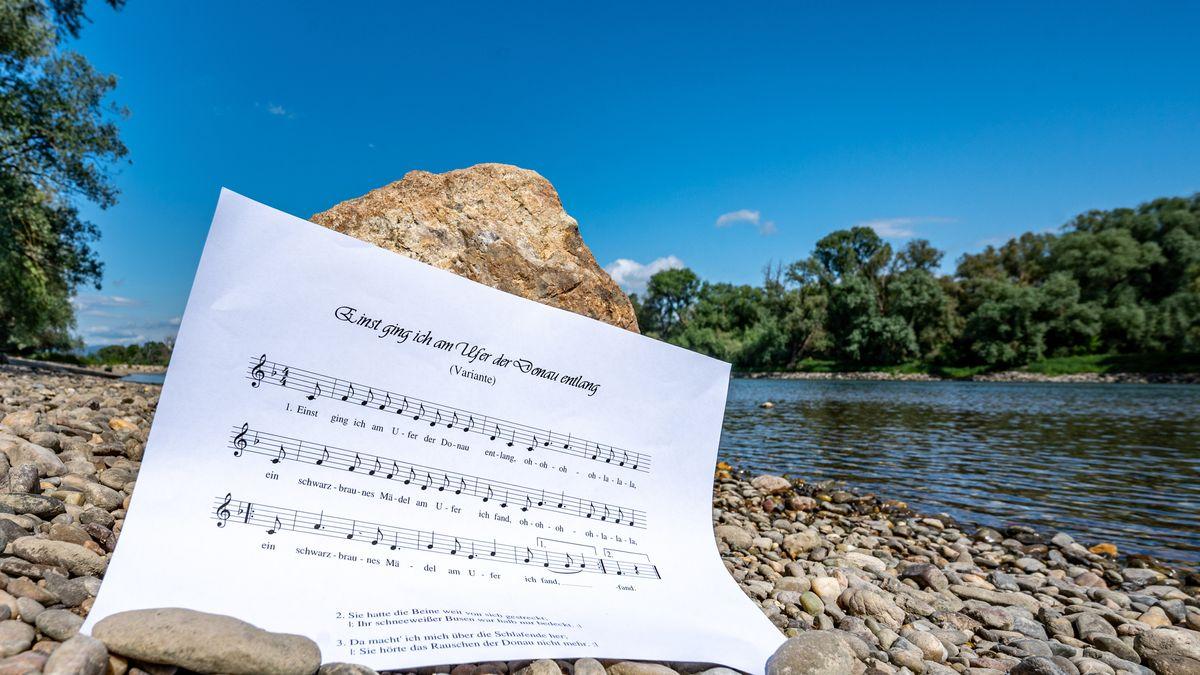 """Ein Notenblatt mit dem Liedtext """"Einst ging ich am Ufer der Donau entlang"""""""